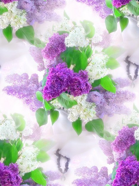 С цветами цветы фон для открытки с